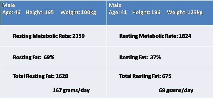 2 Person Comparison of Resting Metabolism